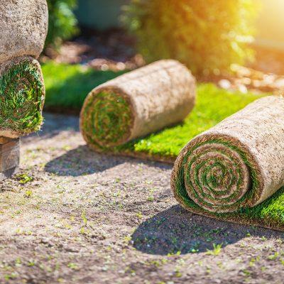 Ako založiť trávnik bez odbornej pomocy